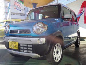 IMGP0602